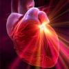 Оздоровление сердечно-сосудистой и нервной системы