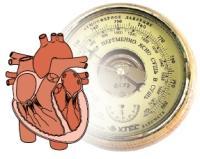 Сердце-магнит